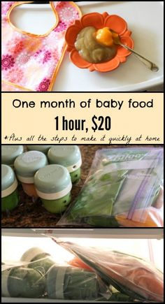 1 Month of Homemade Baby Food, 1 Hour, $20