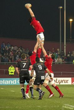 Lineout Munster Rugby, Australian Football, Basketball Court, Soccer, Gay, Rugby Men, Team Games, Beefy Men, Beer Fest