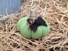 Small Green Fall Pumpkin Sweater Pumpkin by StylingsByMaria