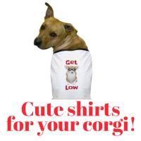 Cute Shirts for your Corgi. T shirts for your favorite pembroke welsh corgi to wear! #corgi #pembrokewelshcorgi #pembrokewelshcorgishirts #pembrokewelshcorgigifts #corgigifts #corgishirts #dogshirts #doggifts