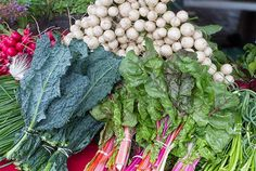 A huge variety of freshness from The Plahnt Farm. (West Mifflin St.)