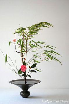 Ikebana, Mai Van Thai Thomas.