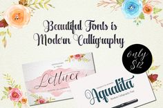 A Perfect Duo of Beautiful Modern Calligraphy Fonts - only $9!