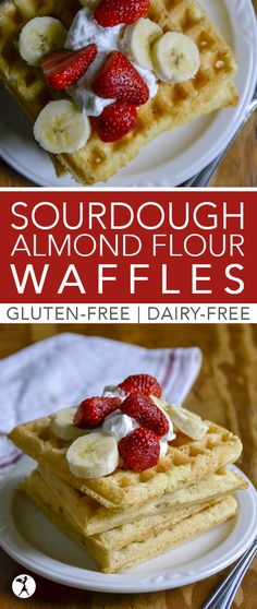Gluten-Free, Dairy-Free Sourdough Almond Flour Waffles (with a grain-free option) Sourdough Almond Flour Waffles are a perfectly fluffy and delicious meal to enjoy for breakfast! They're gluten-free, dairy-free, and have a grain-free option, as well. Dairy Free Breakfasts, Gluten Free Recipes For Breakfast, Healthy Gluten Free Recipes, Real Food Recipes, Yummy Food, Gf Recipes, Paleo Breakfast, Pumpkin Recipes, Dinner Recipes