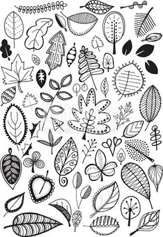 Hand drawn vector doodle leaves, quirky and fun nature clip art.