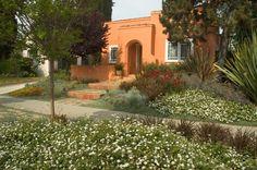 How to replace your lawn with a garden - Grass / lane alternative - Mediterranean landscape by June Scott Design