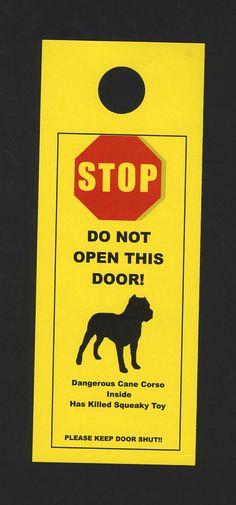 Dangerous Cane Corso Inside Has Killed Squeaky Toy - the signs for a great Italian breed!