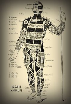 archeatypes of anthropomorphic tribal traditions | Schematic view of a tattooed Marquesan warrior.