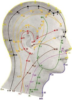 Acupressure Benefits Acupuncture points of the head. All the meridian points are listed if you click through this link. Listed below are the twelve primary energy meridians, their time periods and the main emotions linked with them: - Acupuncture Benefits, Acupuncture Points, Acupressure Points, Acupressure Therapy, Meridian Points, Shiatsu, Les Chakras, Traditional Chinese Medicine, Qigong