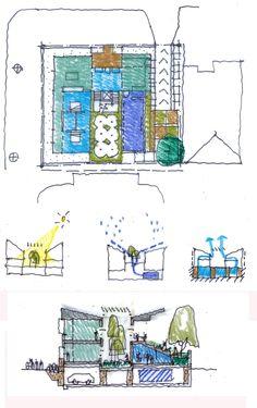 Biophilic house concept