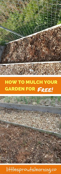 What do you do with all of that leftover material you have in your yard in the fall? There are so many ways to use it. Why not turn it into mulch?