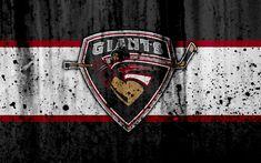 Download wallpapers Vancouver Giants, 4k, WHL, hockey, grunge, Canada, logo, stone texture, art, Western Hockey League