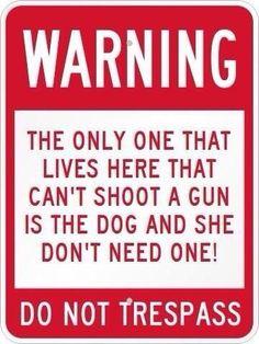 Guns, gun rights, Protect the 2nd