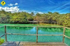 Caminando al Manglar Laguna de las Ninfas, Puerto Ayora, Isla Santa Cruz, Galápagos, Ecuador...!!