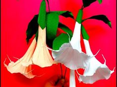 Paper Flowers Brugmansia / Angel Trumpet (flower # 100) - YouTube