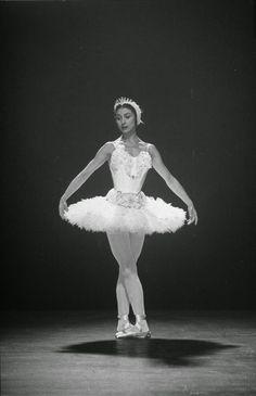 vintage everyday: Beautiful Black & White Photos of Margot Fonteyn in Sadler's Wells Ballet in 1949 Ballet Images, Ballet Photos, Dance Photos, Ballet Pictures, Margot Fonteyn, Black White Photos, Black And White, Vintage Ballet, Australian Ballet