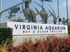 Virginia Aquarium & Marine Science Center in Virginia Beach because aquariums are our favorite!