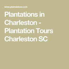 Plantations in Charleston - Plantation Tours Charleston SC