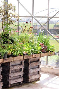 33 Beste Afbeeldingen Van Seasons Groen Potager Garden Flower