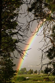 °Beautiful rainbow
