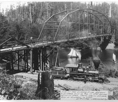 old growth redwood logging pictures - Google Search