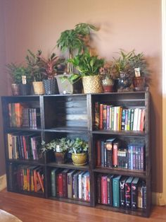 Wooden crate bookcase! Saw other pins on this and had to do it. Crates from Joanne fabrics, stain and sealer from home depo. Total cost ( not including plants or pots) 110.00. Could have been cheaper if I wanted to be patient and buy the crates individually to make use of their 50%off 1 item coupon. Very happy with the end result. To make it feel like a solid piece, I nailed the crates together.