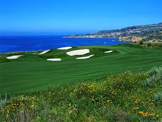 Propose at the Trump Golf Course in Los Angeles....the scenery is to die for