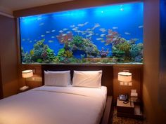 Marvelous Fish Tank Bedroom Wall Design With Small Table Lamp Images