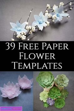 paper flower tutorial Paper flower bouquet free SVG and printable templates, cut files and tutorials. Paper Chrysanthemum Watercolor Paper Lotus Free Succulents Templates Winter W Paper Flower Centerpieces, Paper Flower Arrangements, Paper Flower Wreaths, How To Make Paper Flowers, Paper Flowers Craft, Large Paper Flowers, Paper Flowers Wedding, Paper Flower Backdrop, Wedding Paper