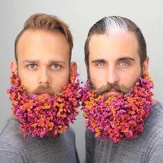 Was man sich so alles als Mann in seinen Bart stecken kann, hat uns dieser Tumblr schon mal gezeigt. Der Hipster-Trend ist anscheinend noch nicht vorüber, denn jetzt kommenBrianundJohnathan. Die beiden Freunde und Bartträger ausPortland stecken hinter