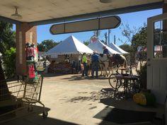 Sherriff on horseback at the Lone Star Gallery, Warrenton trade days, Texas