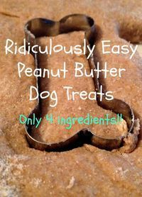 The Simple Life: Ridiculously Easy Peanut Butter Dog Treats - a basic dog treat recipe that can be adapted many ways (read the comments if you need some hints) - all comments say their dogs adore them Homemade Peanut Butter Dog Treats Recipe, Homemade Dog Food, Homemade Dog Biscuits, Doggy Treats Recipe, Recipe For Dog Biscuits, Homemade Doggie Treats, Peanut Butter Dog Biscuits, Simple Dog Treat Recipe, Simple Dog Biscuit Recipe
