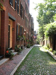 BEACON HILL - This is when I miss my home town!