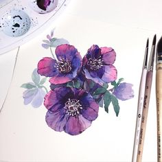 Новости Watercolor And Ink, Watercolor Illustration, Watercolour Painting, Watercolor Flowers, Painting & Drawing, Watercolors, Art Floral, Watercolor Techniques, Art Techniques
