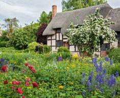 Quaint cottage garden