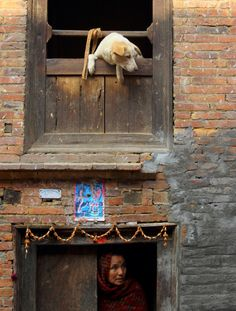 A dog looks out from a window as a woman comes out from the door of her house in the ancient city of Bhaktapur near Nepal's capital.