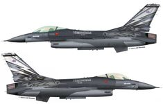 Survival Prepping, Survival Skills, F 16 Falcon, Military Weapons, Paint Schemes, Old Art, Viper, Fighter Jets, Aircraft