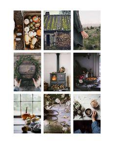 Autumn's Approach - Rowen & Wren