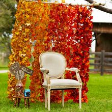 Fall Leaf Backdrop