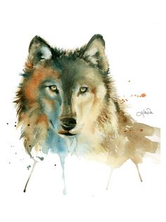 Grey Timber Wolf, watercolor print by Katrina Pete. Wolf painting, woodland prints