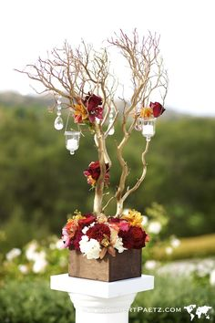 Gold Manzanita Branches with Flowers, Hanging Crystals and Votives | Fall Wedding Decor