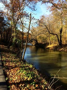 Hedgesville, West Virginia, Back Creek Allensville area.