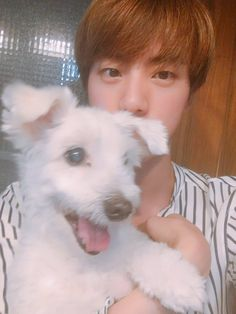 Jin with a puppy #jin #bts #Twitter