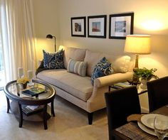 Small Apartment Living - contemporary - living room - raleigh - by Lee Ann Burkhart Interiors