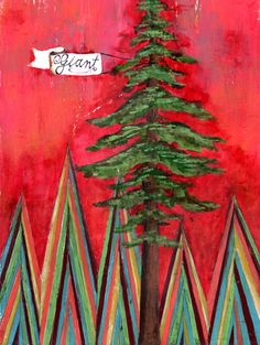 Redwood by Lisa Congdon