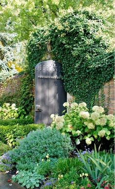 garden gate with wonderful flowers and foliage