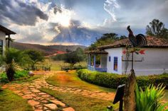 Roça lirios do campo.: Na roça! O sol a nascer atrás do monte E a passara...
