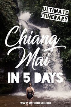 5 Days in Chiang Mai Things to do in Chiang Mai Chiang Mai is one of those must see places in Thailand, but how much time should you spend here? Find out in this Chiang Mai itinerary for 5 days! Thailand Vacation, Thailand Travel Guide, Visit Thailand, Bangkok Trip, Thailand Honeymoon, Travel Blog, Asia Travel, Solo Travel, Taiwan Travel