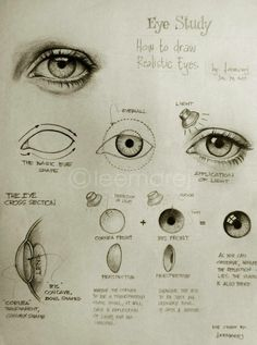Drawing Realistic Eye Study - How to draw realistic eyes (Thank you, García García García García García Powers ! Realistic Eye Drawing, Drawing Eyes, Painting & Drawing, How To Draw Realistic, How To Draw Better, How To Draw Eyes, Frog Drawing, Drawing Hair, Drawing Lessons