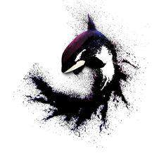 Killer whale by kemza.deviantart.com on @deviantART